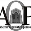 accademiaorganisticapinerolese.org